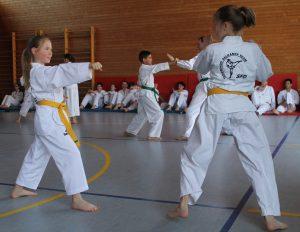 Taekwondo SFD