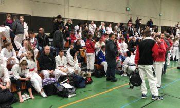 Taekwondo: DAN-Vorbereitungslehrgang